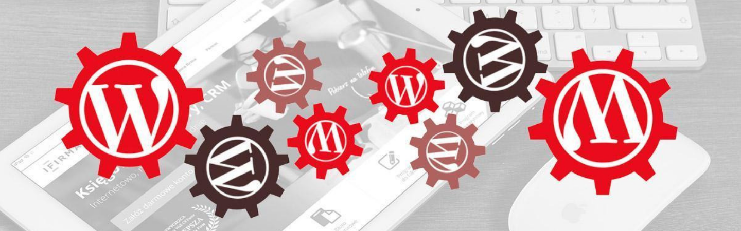 Why do I need a WordPress support plan?