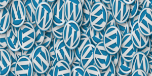 Why You Can't Afford to Forget WordPress Updates