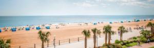 Website Design Virginia Beach